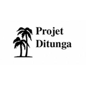 Proyecto Ditunga